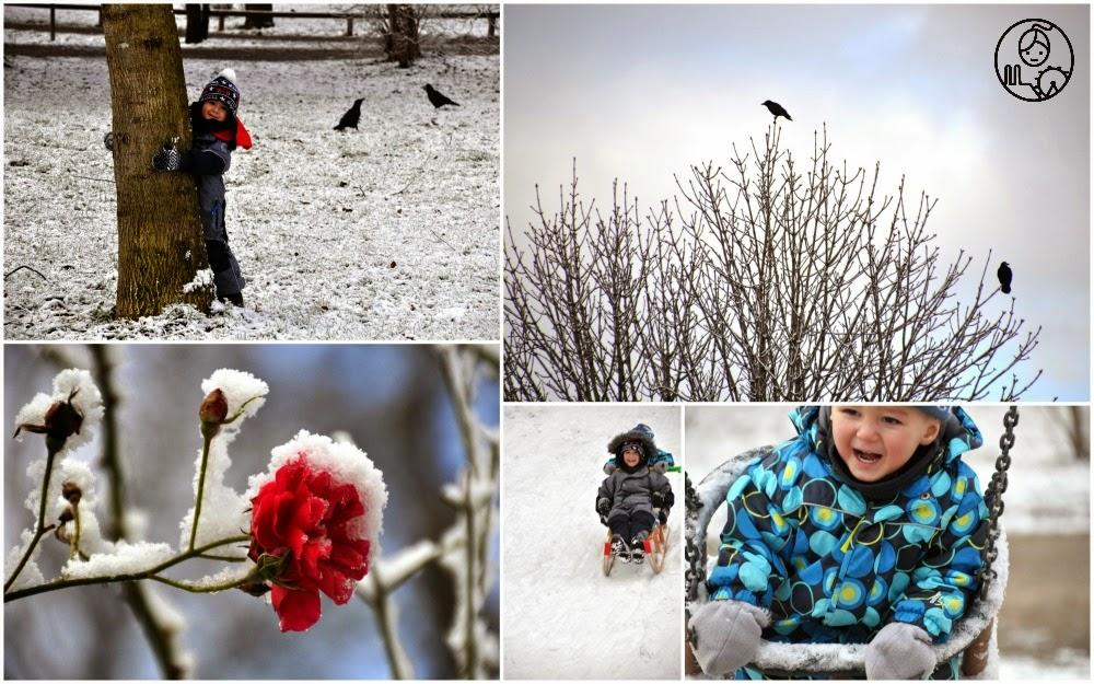 Snieg-w-Monachium