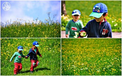 Zdjecia-dzieci-w-internecie