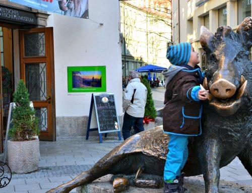 Leśny świat zwierząt w Muzeum Łowiectwa i Rybołóstwa w Monachium