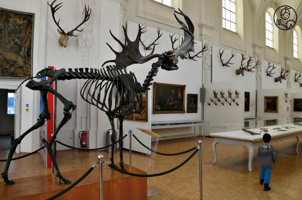 Muzeum-Lowiectwa-i-Rybolostwa-Monachium