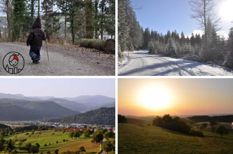 5 regionów w Niemczech, które warto odwiedzić_Szwarcwald